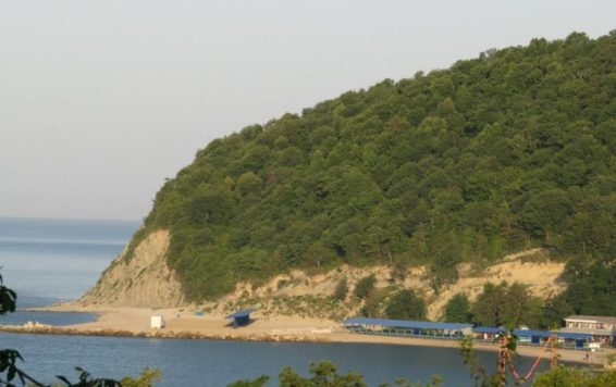 gora-ezhik11